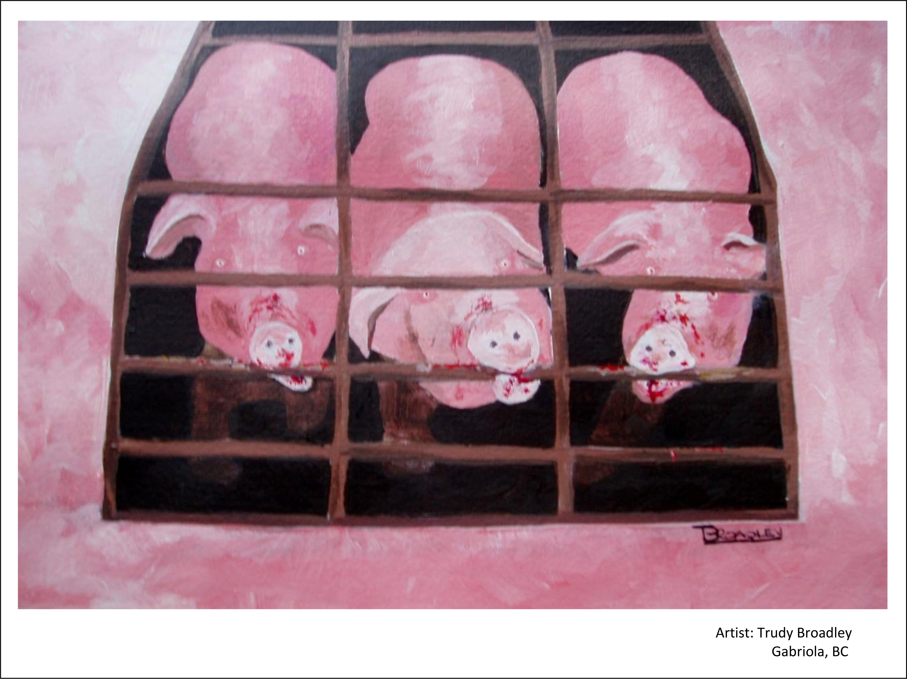 Painting made by BC artist for CETFA's sow stalls campaign.