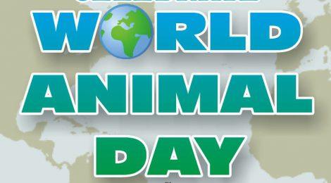 CETFA in Calgary for World Animal Day