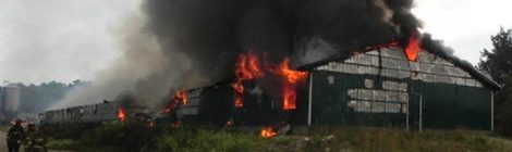Barn fires which killed farmed animals in Quebec (2015-2018)