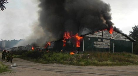 Barn fires which killed farmed animals in Quebec (2015-2019)