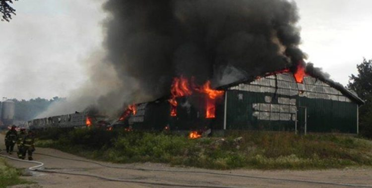 Barn fires which killed farmed animals in Quebec since january 2015