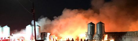 Un feu de ferme dans une zone affectée une par épidémie de DEP soulève des questions