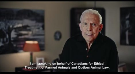 CETFA Releases New PSA on Quebec Barn Fire Epidemic