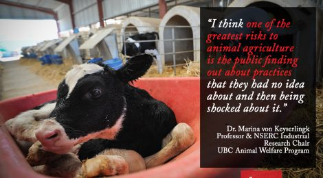 Dairy Researcher Advises Producers to Keep Practices Hidden From Public